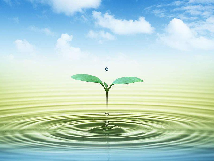 环境保护咨询